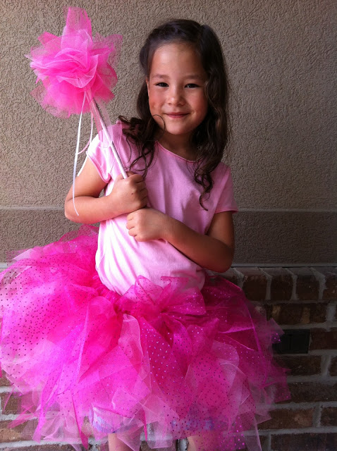 Pink Tutus and Fairy Wands